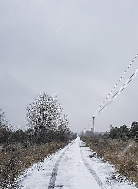 chernobyl ptipyay farmer