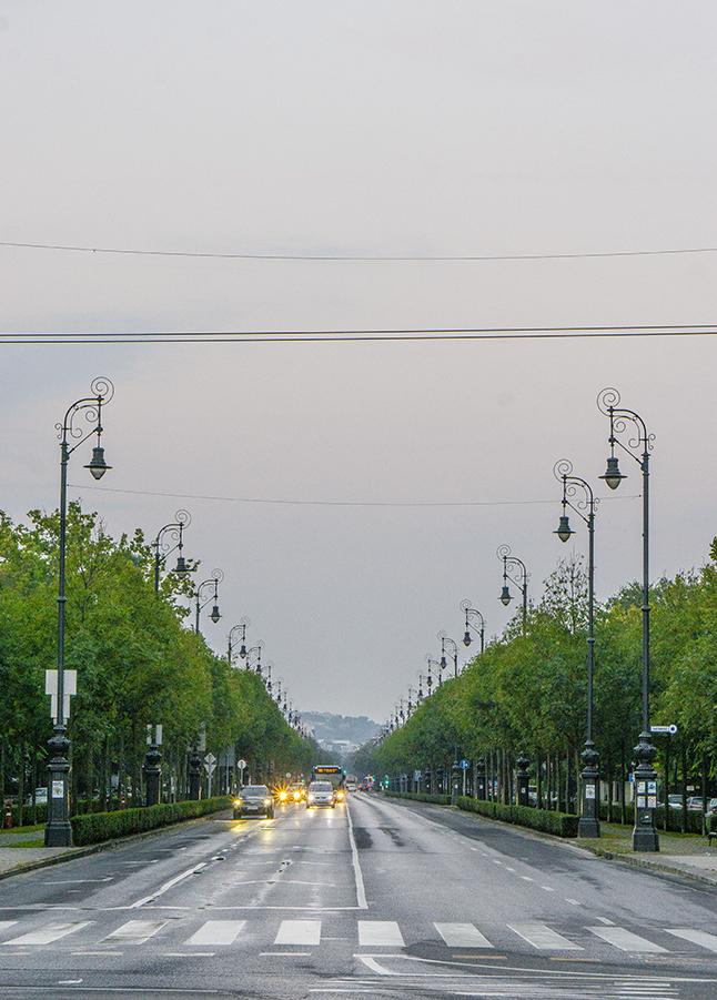 Dando di spalle Piazza degli Eroi budapest